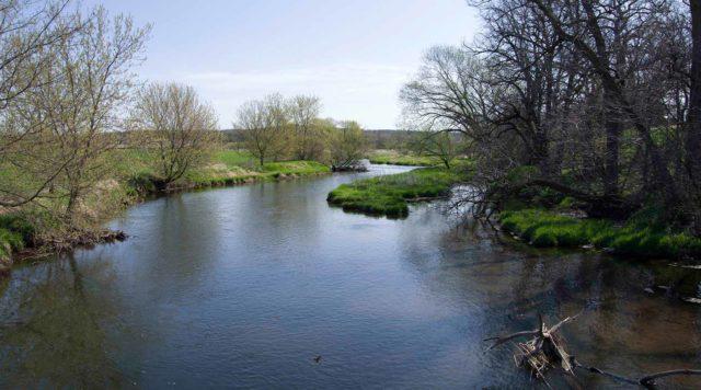 Sugar River through Neperud property