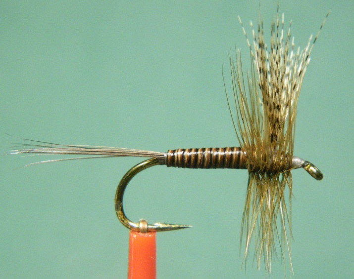 Quill Gordon fishing fly by Rusty Dunn